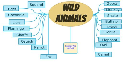 Check out my Gliffy Diagram: Animals