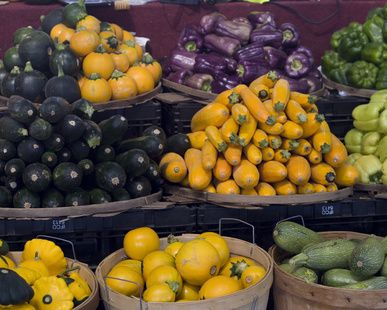 a variety of squash all have gi values under 35