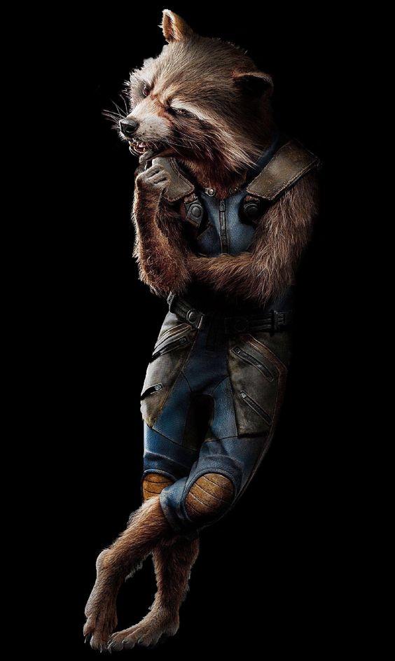 Gadget Raccoon, Constelación de la Familia 85f66f2f97815d0f5c9e7391728e2e42