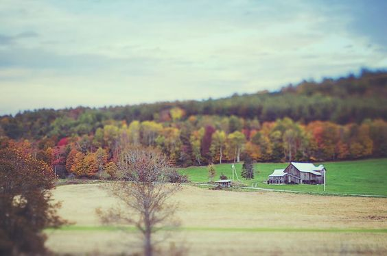 Scenes from a #Vermont #getaway this weekend. So beautiful this time of year I hated to come home. #fall #autumn #NewEngland #ignewengland #igersnewengland #igvermont #wanderlust #photos #gratitude #travelphotography #ladyboss #exploringtheglobe #wanderer #justgo #adventure #roamtheworld #explore #nomad