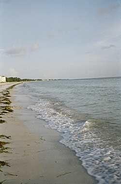 Florida Keys; Gulf of Mexico