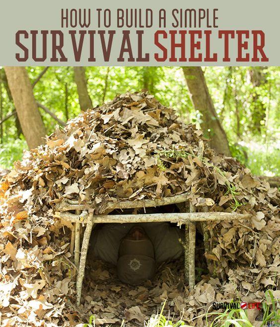Survival Skills: Pinterest • The World's Catalog Of Ideas