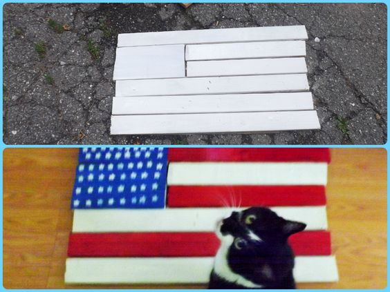 Got this idea on Pinterest, of course ;) It was Flag day yesterday, perfect excuse to whip out a flag project. Please excuse my photo bombing kitty, he's a sucker for a photo op. ;) A few scrap pieces of wood, craft paint   my DIY star stamp... and  voila. Nailed it ;) Get it? B/c it's nailed together, lol. Yup, I'm a dork. :D But seriously, this was fun  super easy, as it's supposed to look less then perfect and rustic. Low opportunity for my OCD to kick in, lol