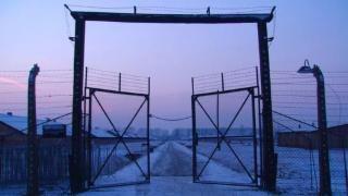 Die Story im Ersten: Ich fahre nach Auschwitz