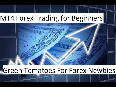 Mt4 Forex Trading For Beginners Green Tomatoes For Forex Newbies
