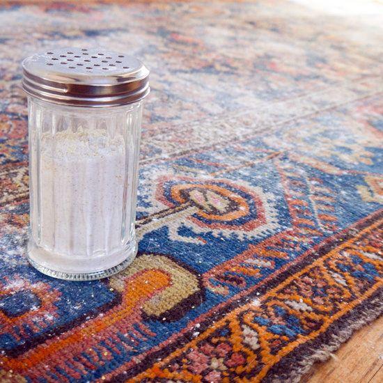 Homemade Dry Carpet Cleaner