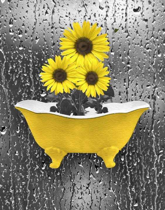 Sunflowers Raindrops Modern Bathroom/Bedroom Matted Artwork Home Decor Picture  Status: Availab...