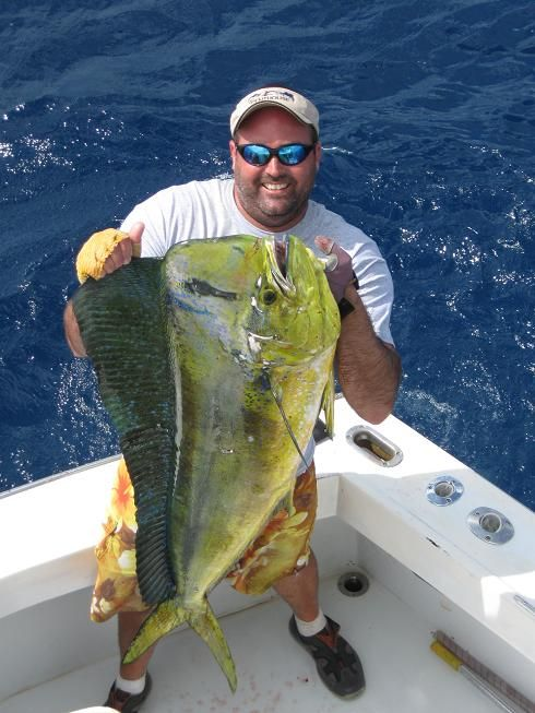 Sea sports sport fishing and pelagic fish on pinterest for Fort lauderdale fishing