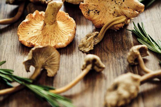 Völlig zu Unrecht haben Pilze ein dröges Image! 10 Dinge, die ihr UNBEDINGT über Pilze wissen solltet, gibt's HIER: http://www.shape.de/diaet-und-ernaehrung/lebensmittel/a-60714/10-dinge-ueber-pilze.html