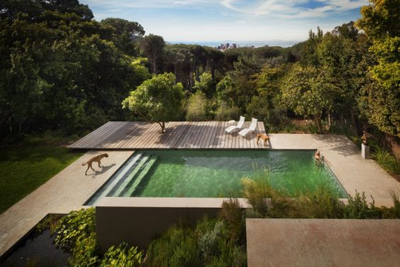 anyone have any other images of a square swimming pool?  need.