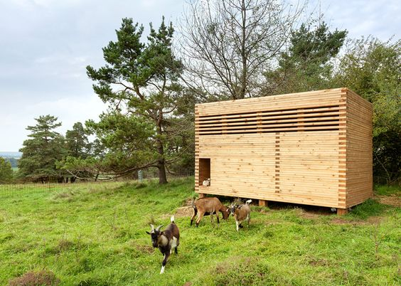 Timber barn created for a herd of pygmy goats.