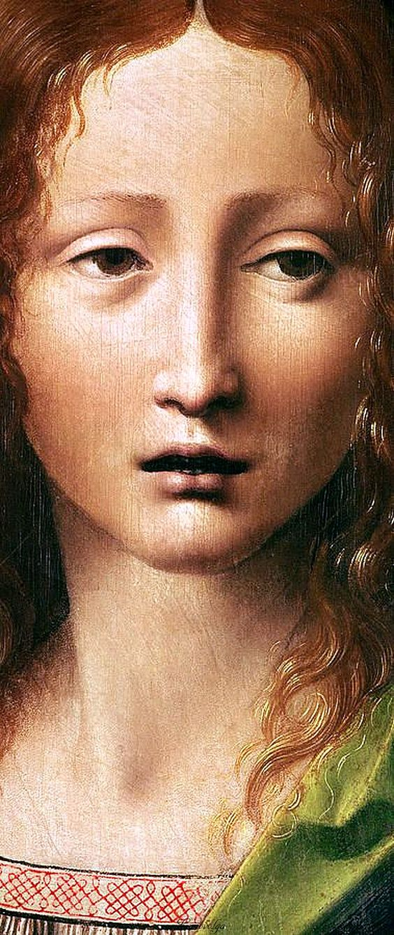 Leonardo Da Vinci - Renaissance - Head Of The Savior (detail):