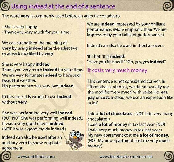 how to use the word indeed in a sentence