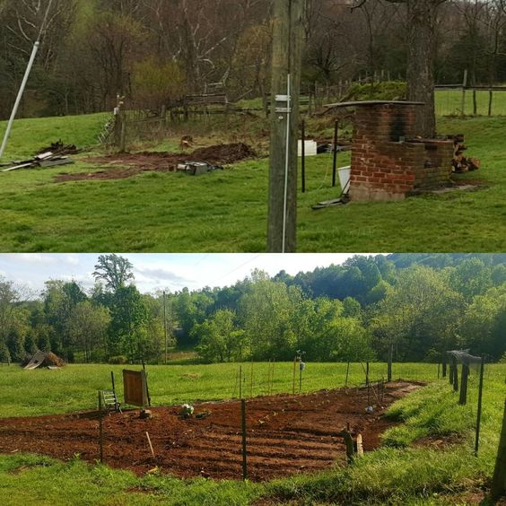 New garden plot before and after