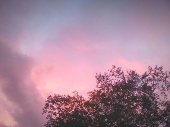 A dream of better tomorrow. .. Pink Sky, Pink Skies, Sunset, Clouds, Sky, Beautiful, Silhouette, Trees, Evening, Закат by Alexandra Cook on EyeEm - LinanDara's Art-n-Folk