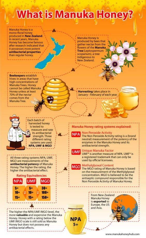 Manuka honey health benefits; the only honey with medicinal benefits