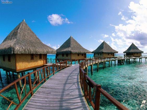 Tuamotu Island