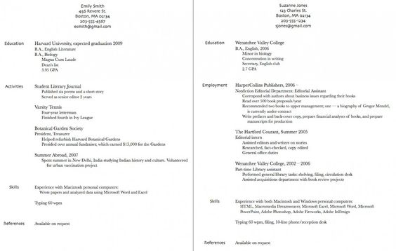 Siebel Architect Resume (resumecompanion) Resume Samples - application architect resume