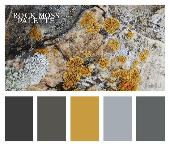 This is exactly what I want! Rock Moss Color Palette from StudioJRU