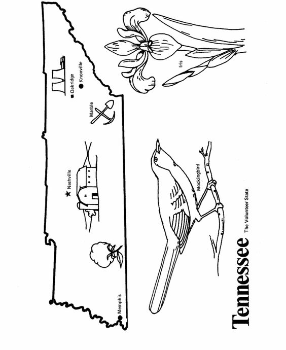 Tennessee State Outline Coloring Page Copy Image And Paste Into Word