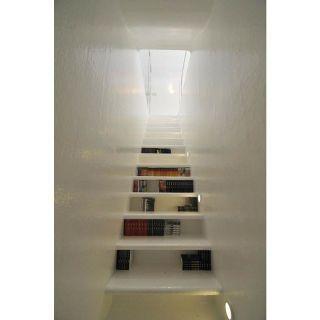 Idéia para organizar livros