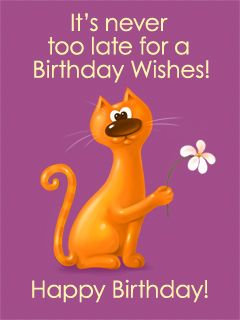 It's never too late for birthday wishes...says this cat.: