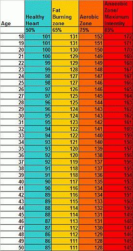 Exercising Heart Rate Chart : Rhino Fitness