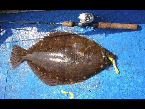 Flounder Fluke Fishing Jigging Tackle And Technique Youtube Fish Fishing Tips Flounder Fishing