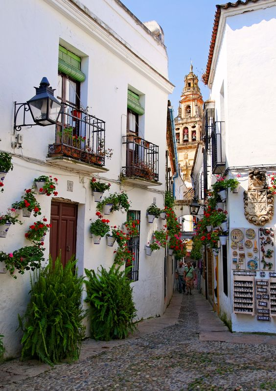 Calleja de las Flores with the Great Mosque of Córdoba in the background ~ Andalusia, Spain