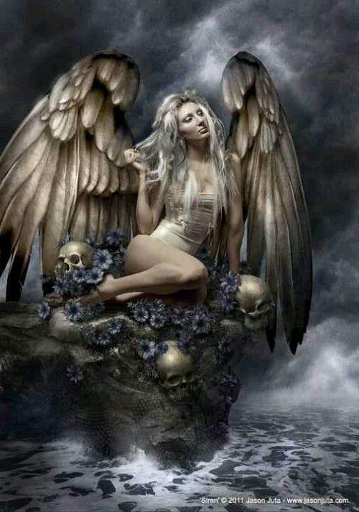Dark angel flowers
