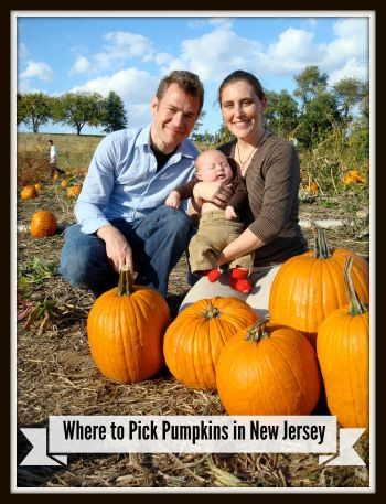 The Ultimate Guide to Pick-Your-Own Pumpkin Farms in New Jersey!   Things to Do In New Jersey   #pickyourownpumpkins #pumpkinpicking #nj #newjersey #farms #hayrides #kids #pumpkins #fieldtrips
