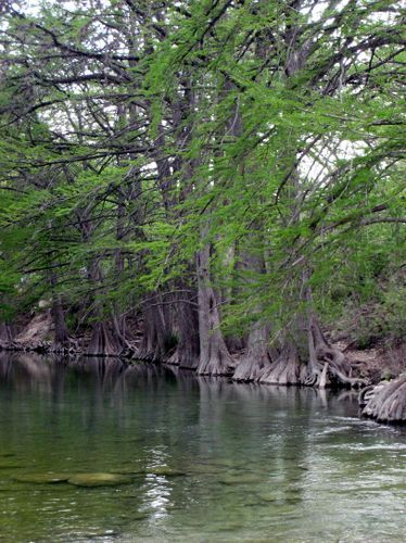 rio frio men The white lady of rio frio, a ghost that haunts the banks of the  the men knew that whoever had fired the deadly shot had to be there and they cautiously .