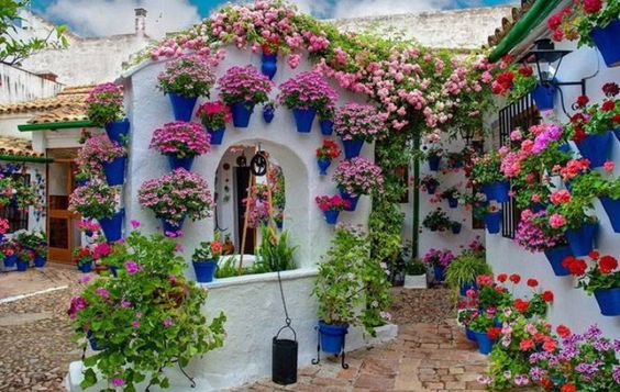 Andalusian courtyard #balconefiorito