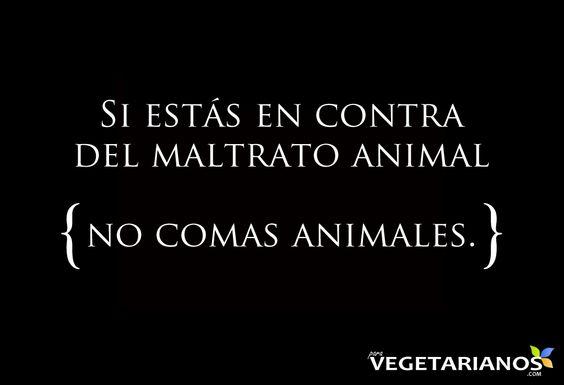 Si estás en contra del maltrato animal, no comas animales