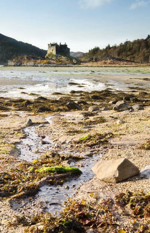 Castle Tioram, west coast of Scotland. Exploring the beautiful, rugged coastline of the Scottish Highlands by mountain bike is definitely the best way to soak up the real Scotland.  #mountainbiking #adventure #scotland  www.mountainbikeworldwide.com  Photo: Tim Winterburn