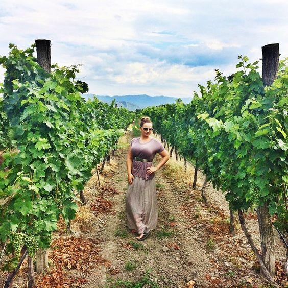 Нас отвели в виноградники и рассказали всё о сортах, способах выращивания и сбора винограда. Ведь для каждого вина нужен не просто разный сорт винограда, но еще и разные участки земли, разный уход. В общем, мало того, что в виноградниках получаются нереально красивые фото, так еще столько нового узнала о своём любимом напитке! @mycitytbilisi