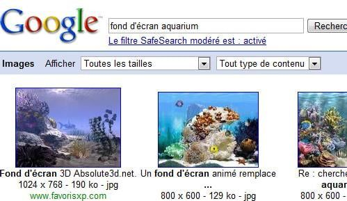 Fond D Ecran Aquarium Gratuit Comment Ca Marche
