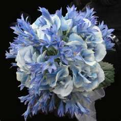 Blue agapanthas accented with white roses