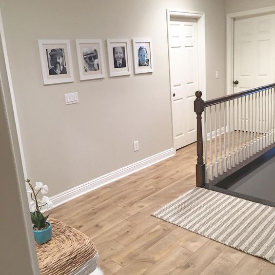 Edgecomb gray by benjamin moore harmonics camden oak for Harmonics flooring