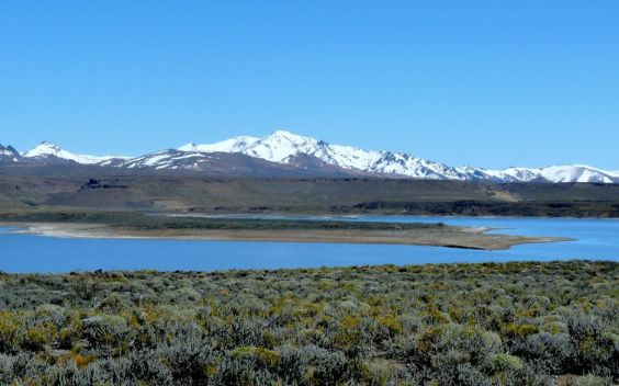 Zapala is an Argentinian town that is home to popular national parks