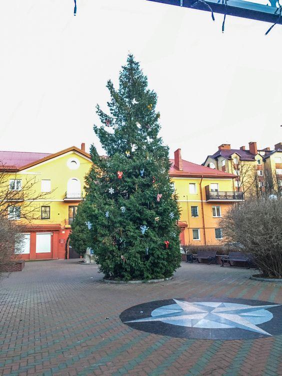 О встрече Нового года на побережье Балтийского моря на курорте Пионерский в 2020 - 2021