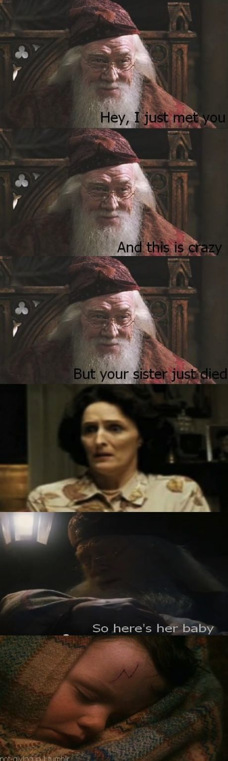 hahahaha. I don't know why I find harry potter jokes so funny, ive never even read the books or seen the movies. but this is hilarious.