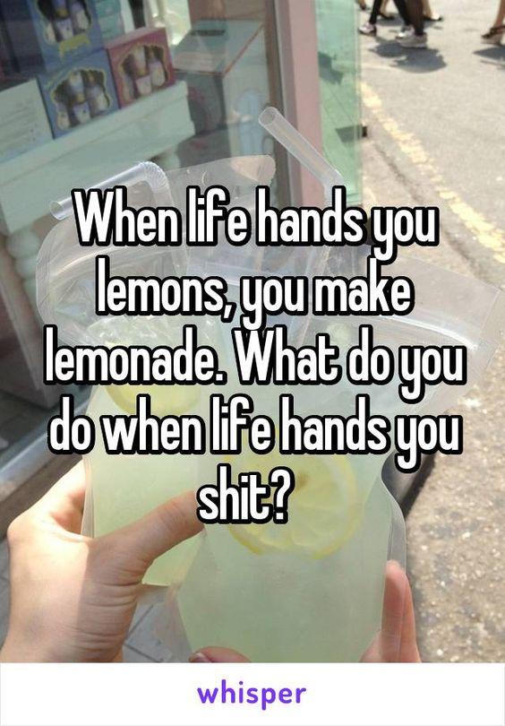 When life hands you lemons, you make lemonade. What do you do when life hands you shit?