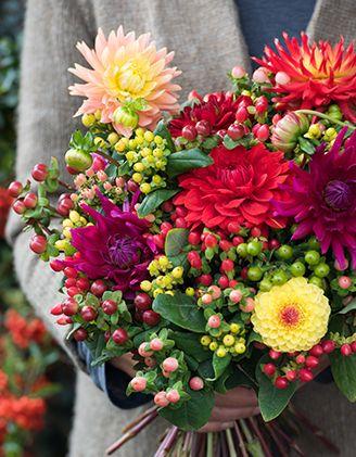 Seizoensbloemen - Inspiratie en informatie voor bloemisten