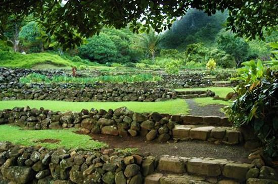 25 Beautiful Hill Landscaping Ideas And Terracing Inspirations Landscaping On A Hill Hillside Landscaping Landscaping With Rocks