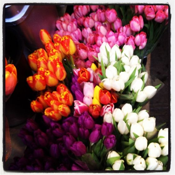 Gorgeous pic of beautiful flowers taken by the folks from the CFDA. These flowers are from a Deli here in the city. Just lovely!