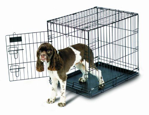 Aspen Pet Home Training Wire Crate Black 24x18x21 For Sale Wire Dog Kennel Dog Kennel Large Dog Crate
