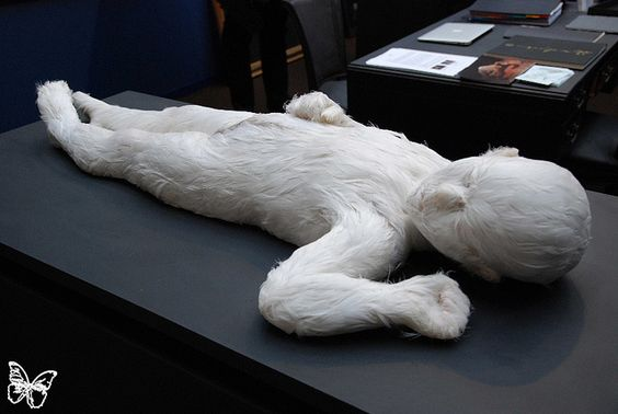 Lucy Glendinning  Galerie Da End - Paris