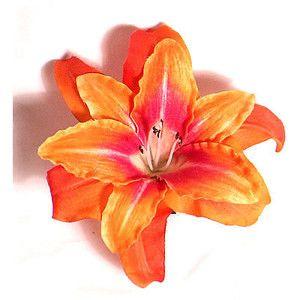pink orange lily tiger