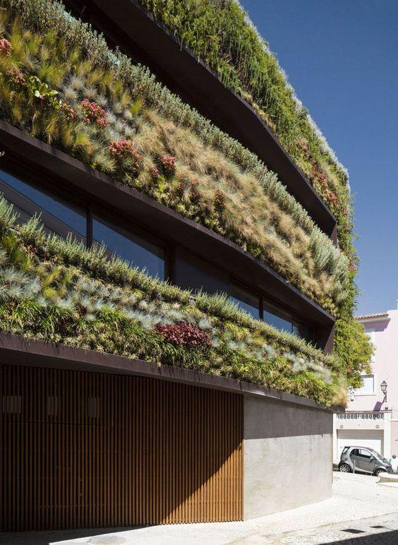 Fachada de casa coberta de plantas